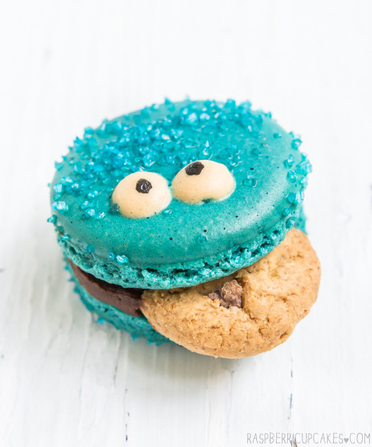 Cookie Monster Macarons Raspberri Cupcakes